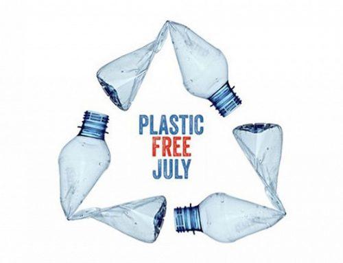 Il B&B La Favorita aderisce al progetto PLASTIC FREE